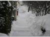 snijeg_00003